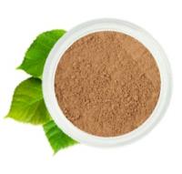 Основа Medium Warm Foundation / Средний оливковый